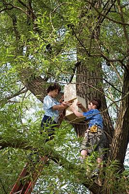 Altruism Photograph - Installing A Nesting Box by Jim West
