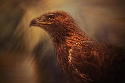 Eagle Wall Art - Photograph - Instincts Cage by Desislava Ignatova
