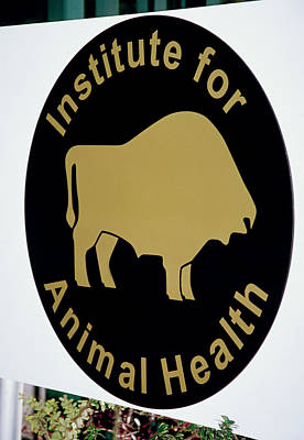 Institute For Animal Health Sign Art Print by David Hay Jones/science Photo Library