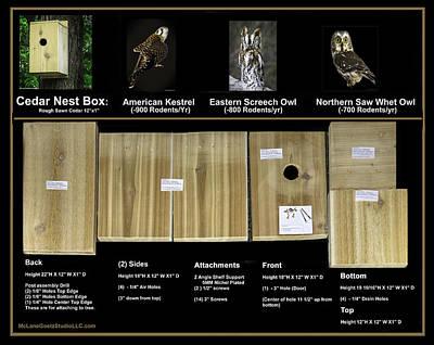 Mice Photograph - Instructions Cedar Nest Box For Kestrel And Owl by LeeAnn McLaneGoetz McLaneGoetzStudioLLCcom