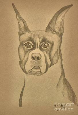 Intelligence - Boxer Print by Maria Urso