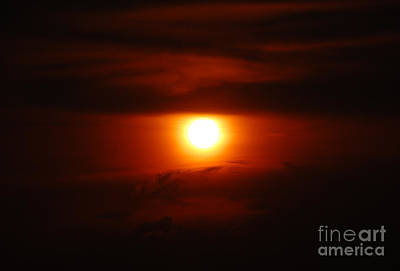 Photograph - Intense Sunset by Debra Thompson