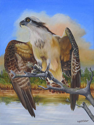 Osprey Painting - Intent Osprey by Phyllis Beiser