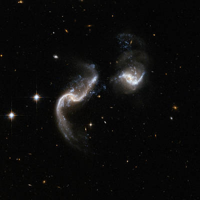 Constellations Painting - Interacting Galaxy Arp 256 by Celestial Images