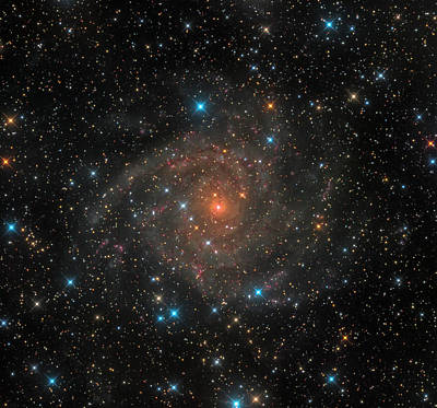 Photograph - Intermediate Spiral Galaxy Ic 342 by Michael Miller