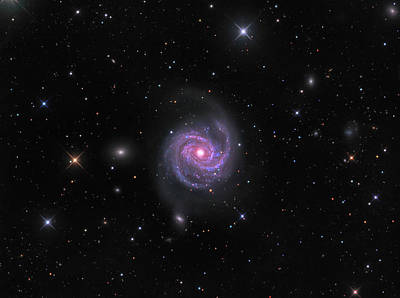 Photograph - Intermediate Spiral Galaxy Messier 100 by Michael Miller