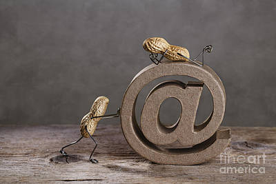 Miniature Photograph - Internet by Nailia Schwarz