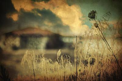 Impressionism Photos - Into Deep Sleep by Zapista Zapista