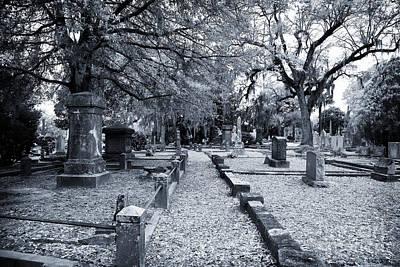 Photograph - Into Magnolia Cemetery by John Rizzuto