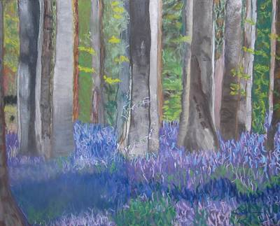 Pastel - Into The Bluebell Wood by Calliope Thomas