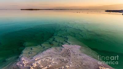 Photograph - Into The Deep by Jacki Soikis