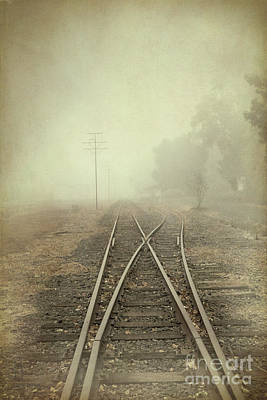 Into The Fog Art Print