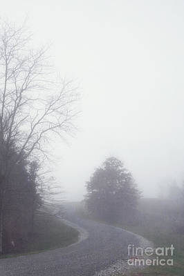 Into The Fog Art Print by Kay Pickens