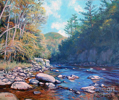 Into The Gorge Art Print by Gerard Natale