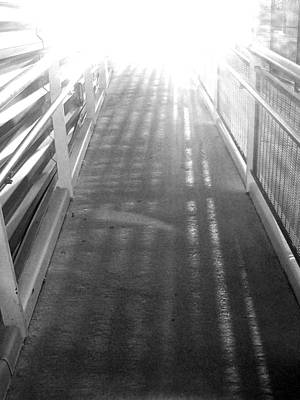 Photograph - 'into The Light' by Liza Dey