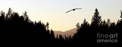 Idaho Photograph - Into The Sunset by Cindy Singleton