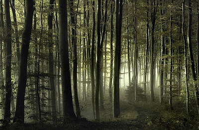 Haze Photograph - Into The Unknown by Norbert Maier