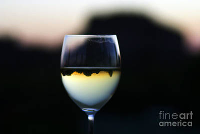 Photograph - Inverted Landscape In Wine Glass by Ron Chilston