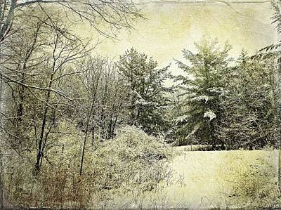 Photograph - Invitation To Winter  by Dianne  Lacourciere
