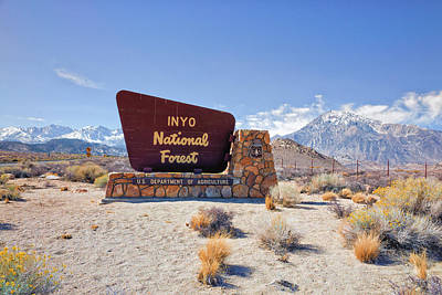 Photograph - Inyo National Forest Sign by Priya Ghose