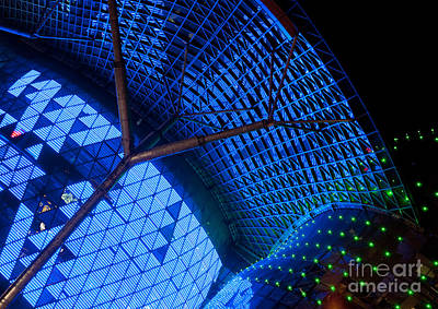 Photograph - Ion Orchard At Night 02 by Rick Piper Photography