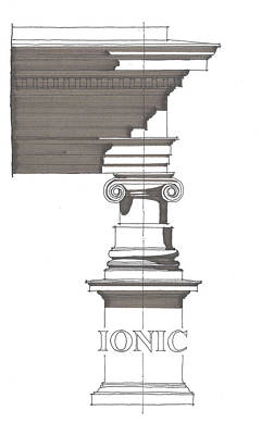 Drawing - Ionic Order by Calvin Durham