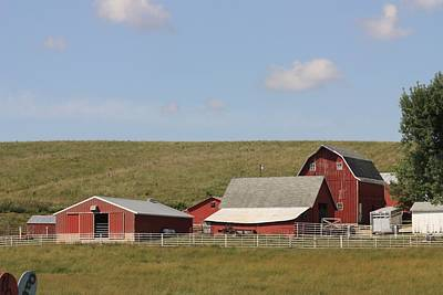 Photograph - Iowa Barns by Kathy Cornett