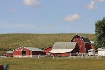 Photograph - Iowa Barns by Kathy Cornett