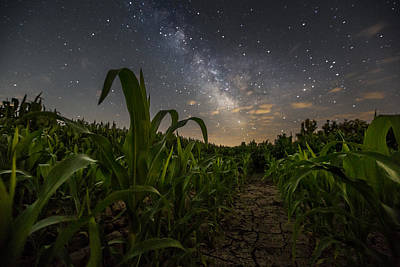 Cornfields Photograph - Iowa Corn by Aaron J Groen