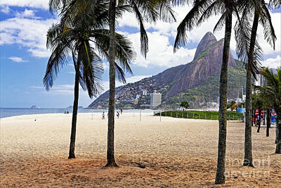 Ipanema Beach Photograph - Ipanema Beach Palm Trees by George Oze
