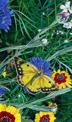 iPhone Case - Butterfly Wildflowers spring time garden floral oil painting green yellow Original by Walt Curlee