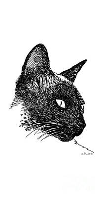 Drawing - iPhone-Case-Cat-Siamese by Gordon Punt