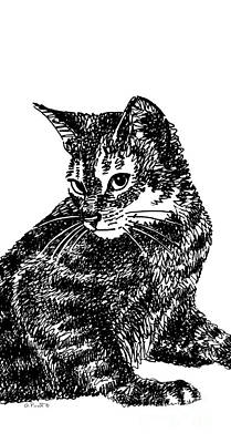 Drawing - iPhone-Case-Cat6 by Gordon Punt