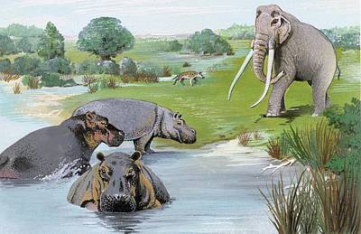 Ipswichian Interglacial Mammals Art Print by Natural History Museum, London/science Photo Library