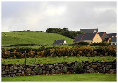 Photograph - Ireland In September by Frank Wickham