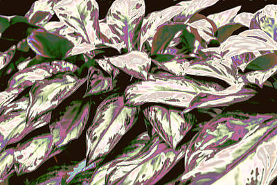 Shinning Digital Art - Iridescent Varigated Leave With Purple And Green by Linda Phelps