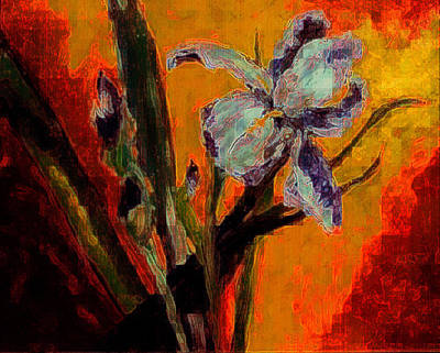 Photograph - Iris And Buds by Jodie Marie Anne Richardson Traugott          aka jm-ART