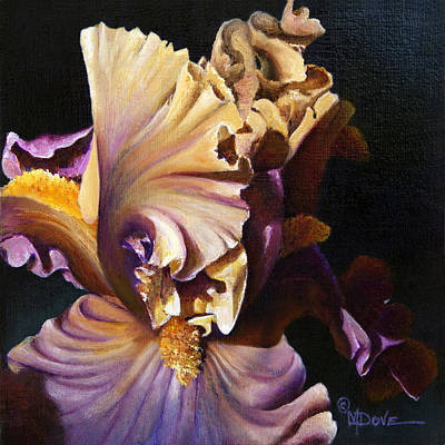 Painting - Iris Bearded Wonder by Mary Dove