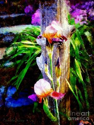 Wooden Fence Post Photograph - Iris Bloom by Janine Riley