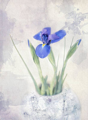 Photograph - Iris Bloom by Robin-Lee Vieira