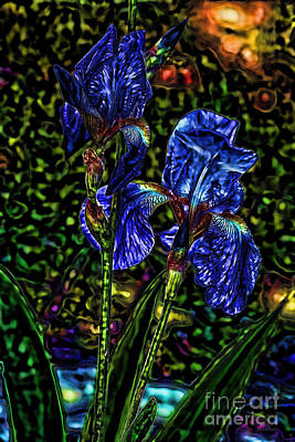 Photograph - Iris Blooms Navy by Lesa Fine