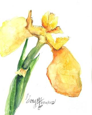 Iris Blooms  Original by Sherry Harradence