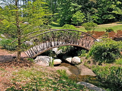 Photograph - Iris Bridge by Eve Spring