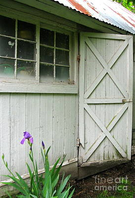 Photograph - Iris By The Woodshed  by Nancy Patterson