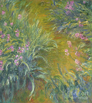 Annenberg Collection Painting - Iris by Claude Monet
