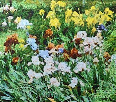 Provence Painting - Iris Flowers by Dragica  Micki Fortuna