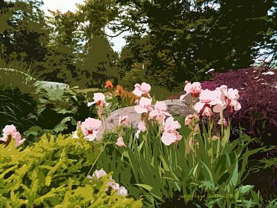 Photograph - Iris Garden by Jacqueline  DiAnne Wasson