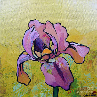 Royalty-Free and Rights-Managed Images - Iris I by Shadia Derbyshire