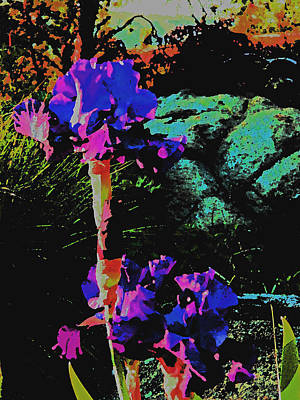 Photograph - Iris In Neon					 by Jacqueline  DiAnne Wasson
