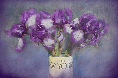 Iris In The New Yorker Art Print